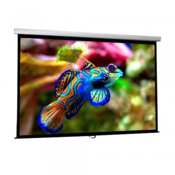 DP Screen Projector Screen - Wall Screen - Matte White - DP-WL-06 - Screen Ratio 6' x 6' - Screen Size 1800 x 1800mm
